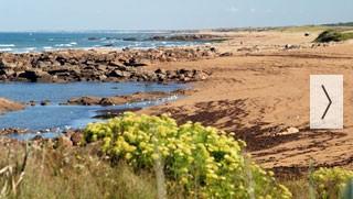 Vendée : Camping 4* près des plages